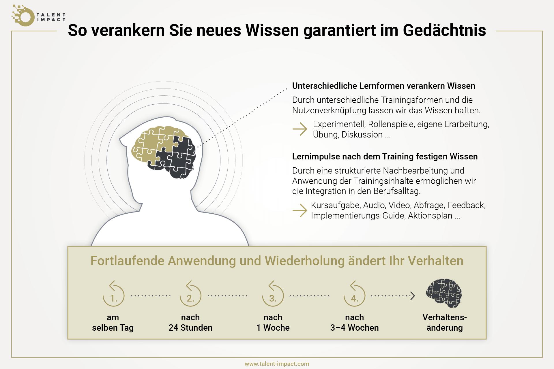 Grafik, die zeigt, wie man durch Wiederholung neues Wissen verankern kann im Gehirn